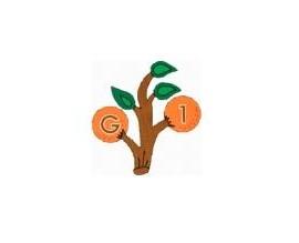 Gaiata 1