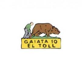Gaiata 10